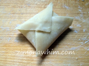 Wonton Pizza Pockets : Zim on a Whim
